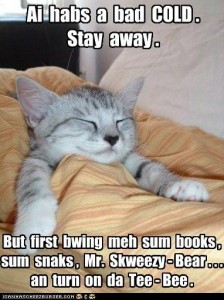 Sick Lolcat under blankets with the caption, Ai habs a bad Cold. Stay away. But first bwing meh sum books, sum snaks, Mr. Skweezy-Bear, and turn on da Tee-Bee.