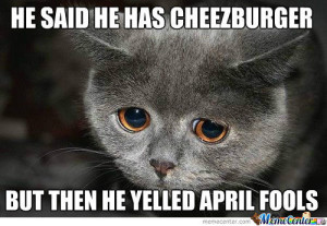 Sad gray kitty, with the caption, He said he has cheezburger but then he yelled April Fools