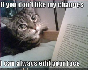Cat with the caption, If you don't like my changes I can always edit your face